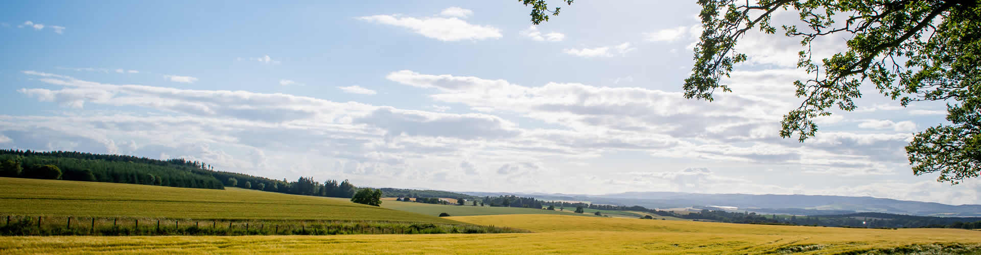 New homes for sale in Perthshire